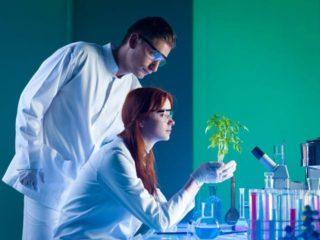 Језичка индустрија као помоћна бионаучна дисциплина