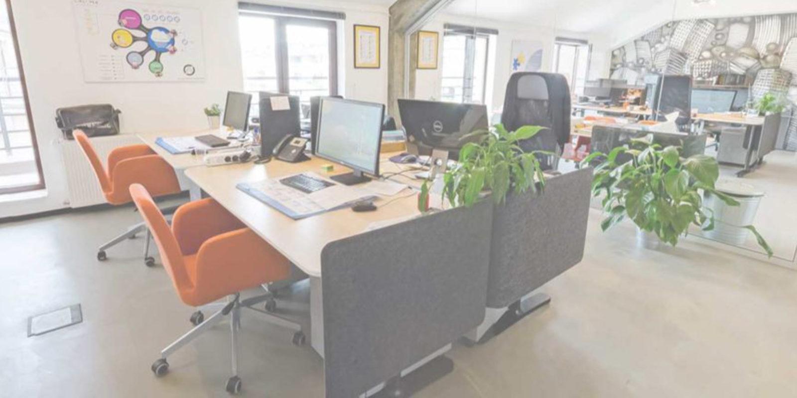 office ciklopea